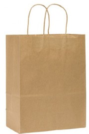 BAGS, SHOPPING 10X5X13 TWISTED PAPER HANDLES, 250/CS